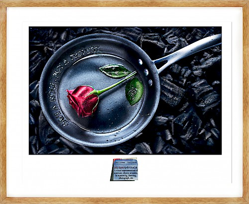 Silent Picture - Save a Rose. Buy a Picture.