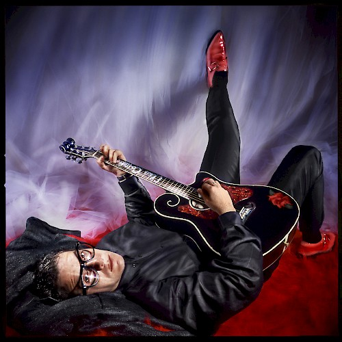 Occupation Dreamer - Elvis Costello
